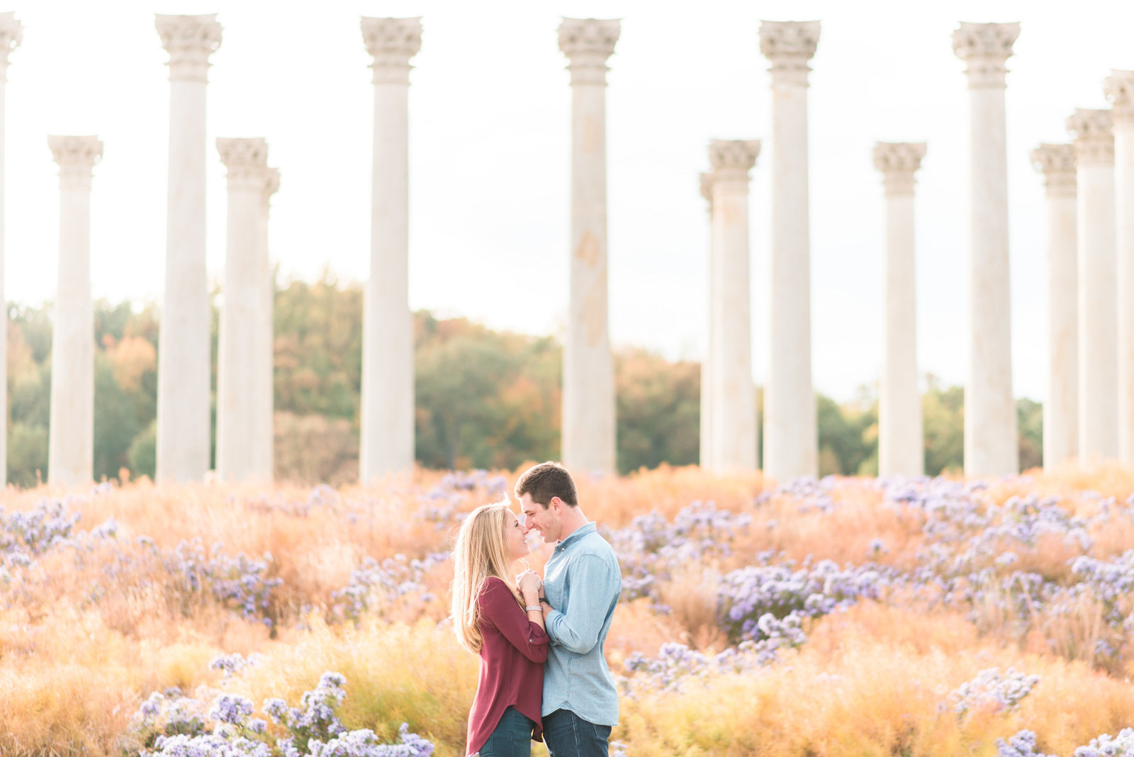 dc-national-arboretum-engagements-photographer-photo280