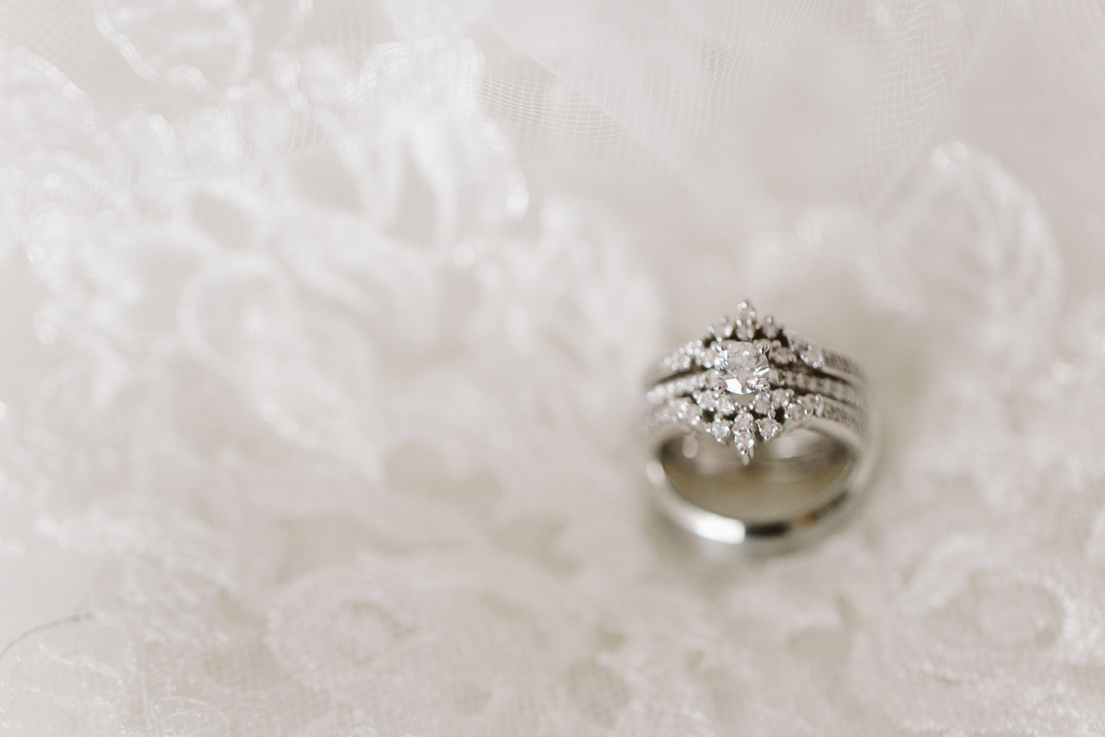 Wedding Portfolio 57