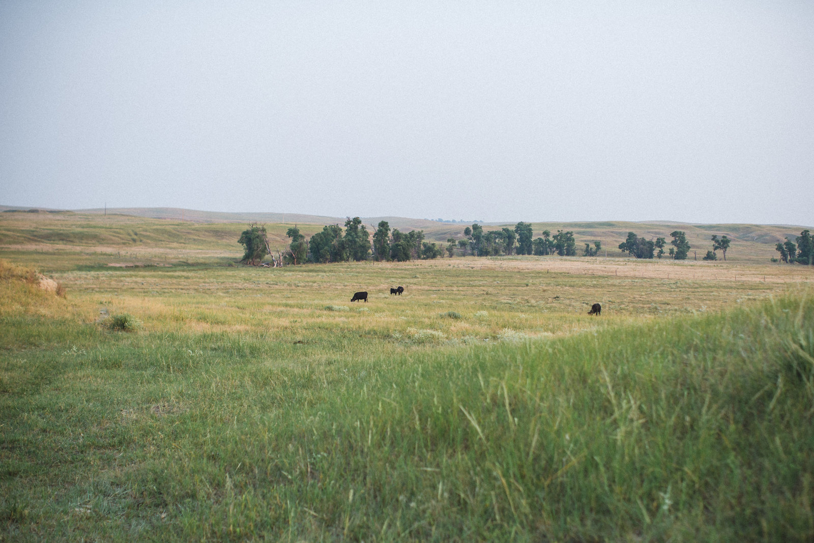Nebraska -DiBlasio Photo-6