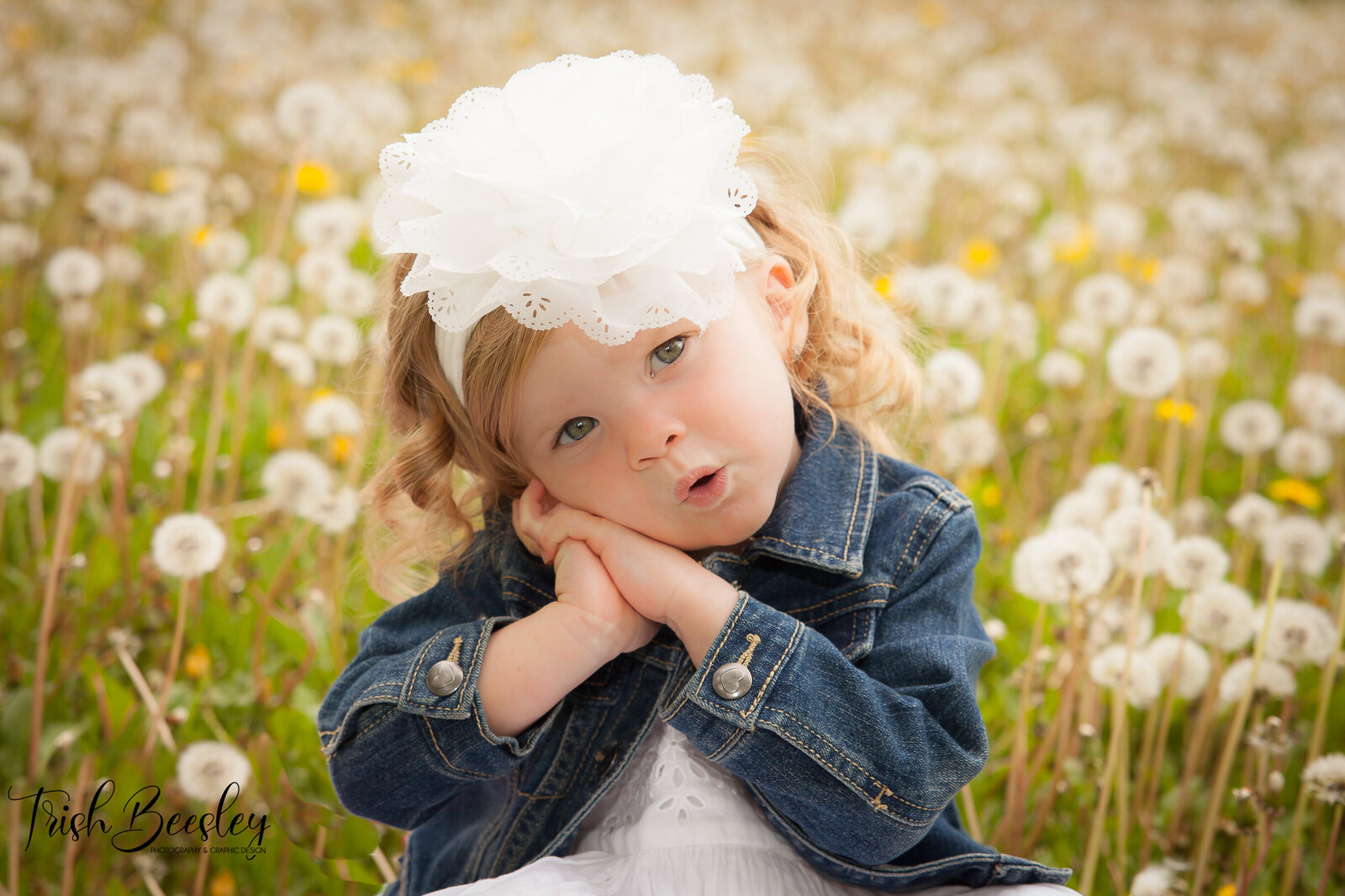 Trish Beesley Photography provides photographic services including Family Photography, Photography for  children and teenagers, as well as Headshots and branding sessions, modelling portfolio's,  cake smashes, event photography and school photos for preschools. Operating from Simcoe County  in the Barrie and Innisfil and surrounding areas Trish Beesley Photography and staff will travel within the GTA and Surrounding areas.