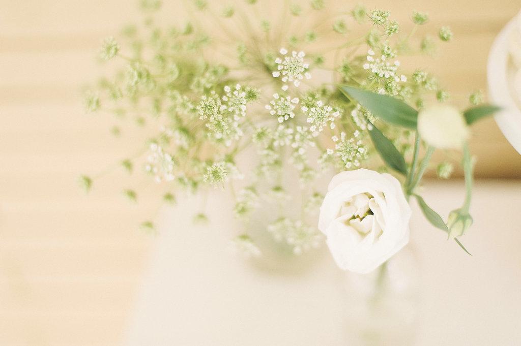 White|Details_DSCN-71