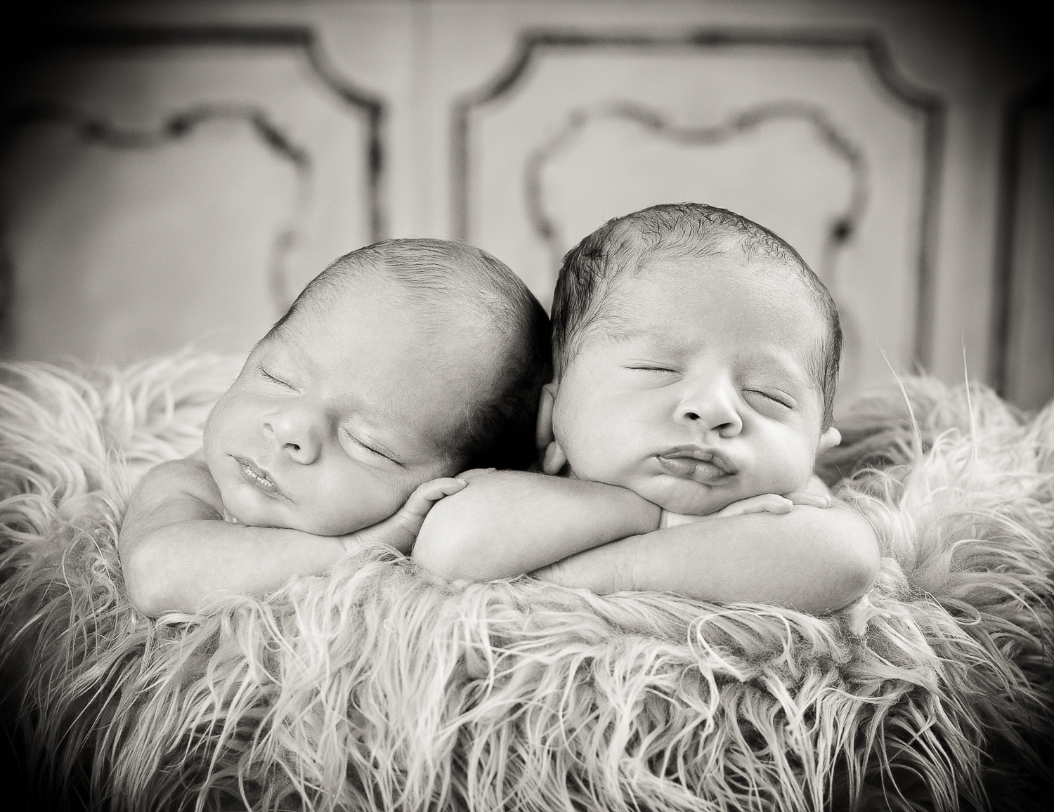 black and white of newborn twins