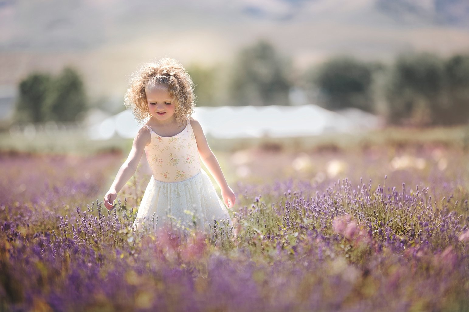 Utah Child Photographer Wish Photography_0225