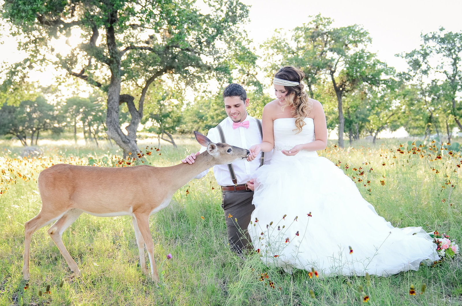 Bride and Groom feed deer in their wedding attire near Canyon Lake