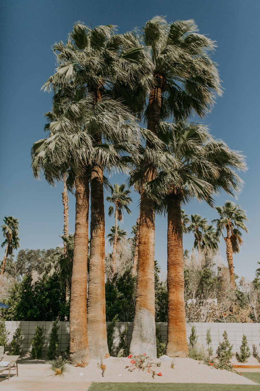 Brianna Broyles_Spencers Wedding_Palm Springs_Wedding Photographer-7