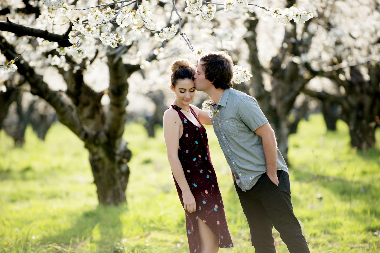 a man kisses his fiance's forehead in an apple orchard at mt. hood