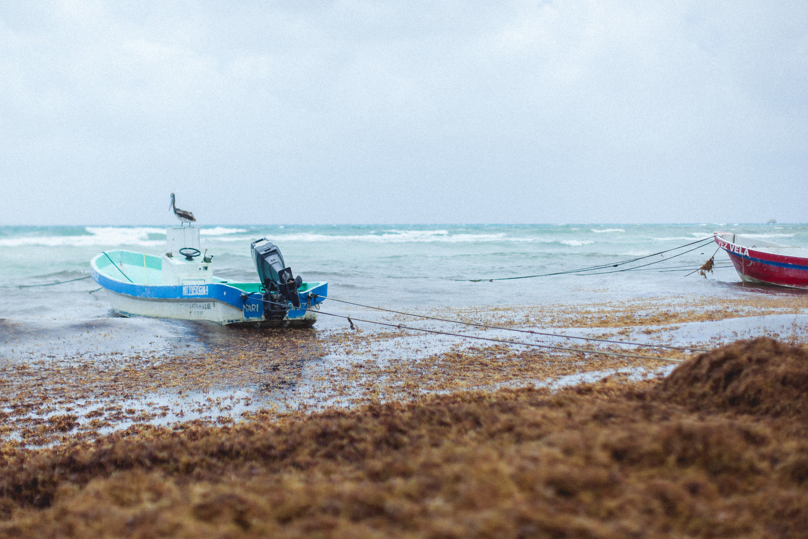 DiBlasio Photo-Mexico-9949