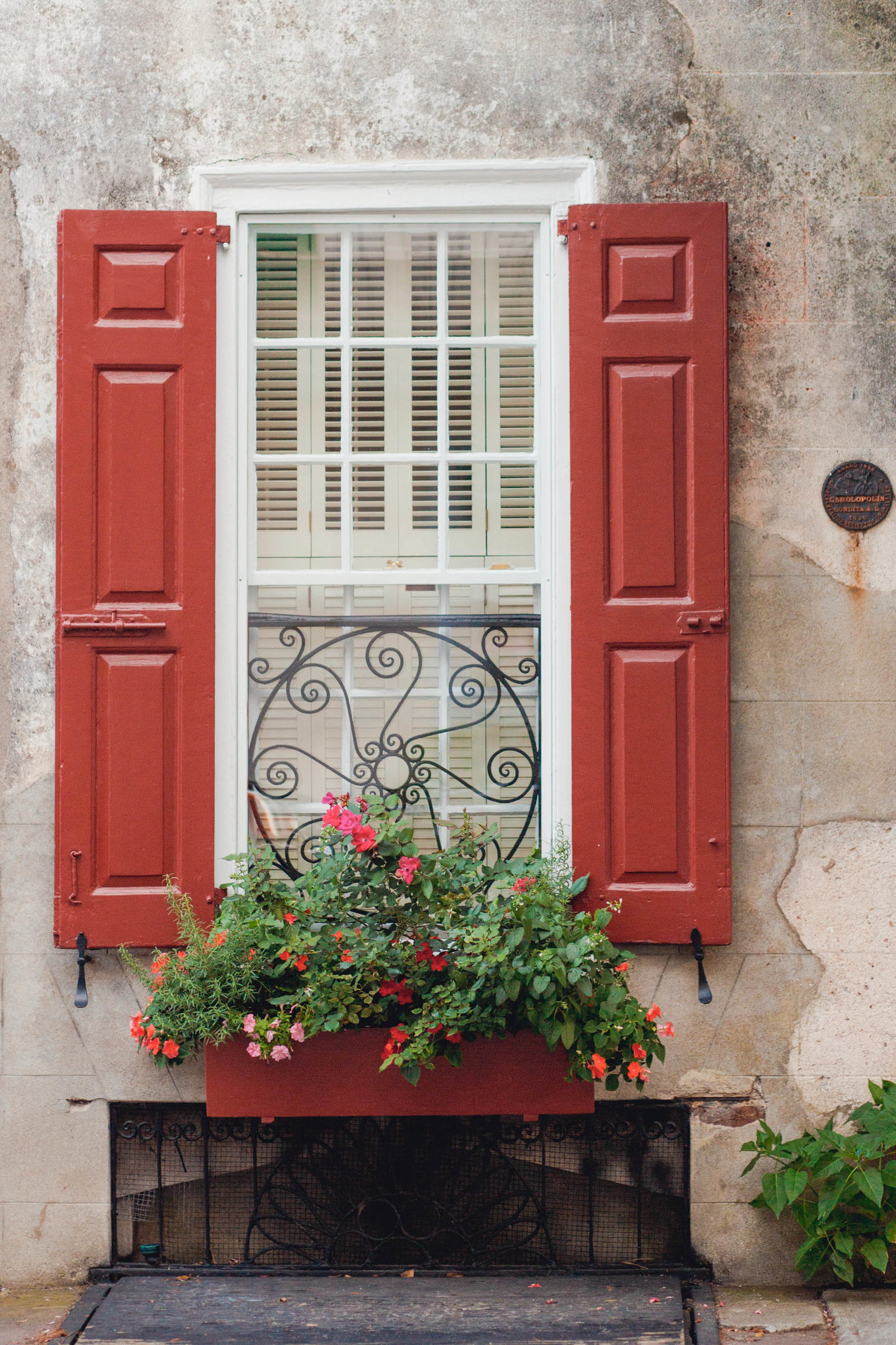 french-quarter-window-flower-charleston-sc-kate-timbers-photography-1016