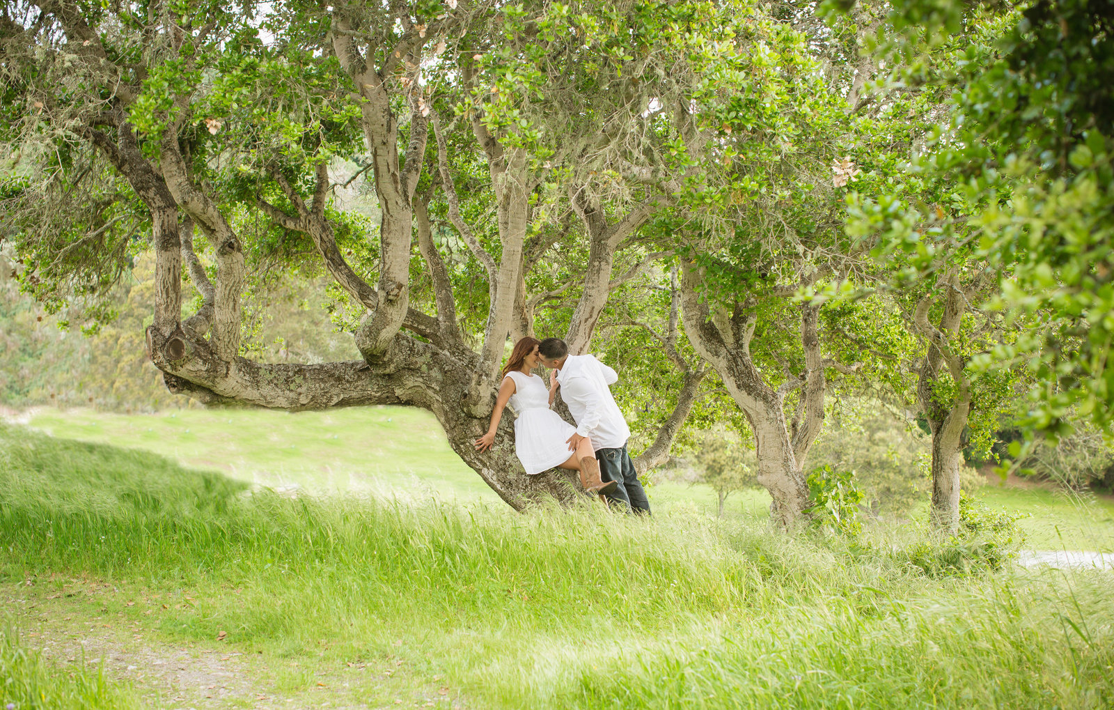 Julies Engagement Session _ Toro Park_ Vanessa Hicks Photography-6719
