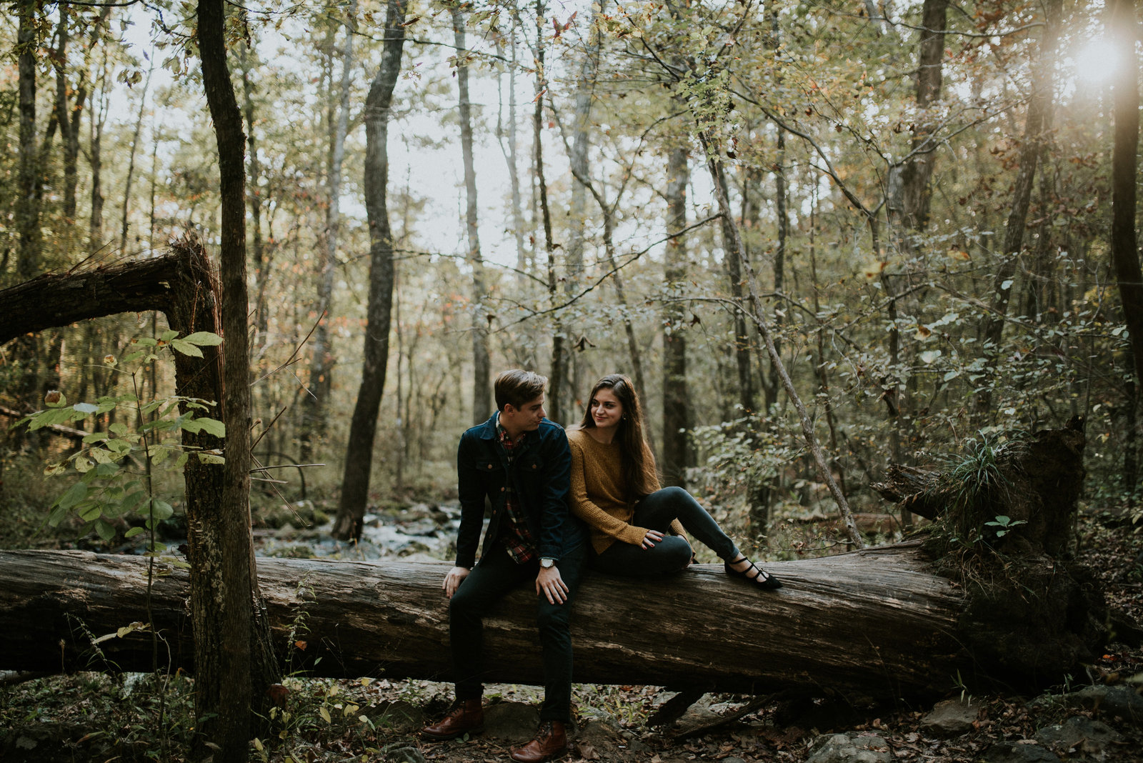 Couple Sitting on a tree in the forest
