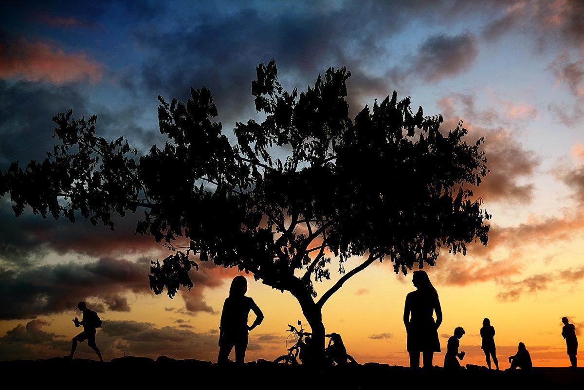 oahu family photos hawaii wedding photographer bryan newfield photography solsonara 41