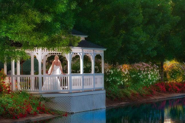 wonder valley weddings
