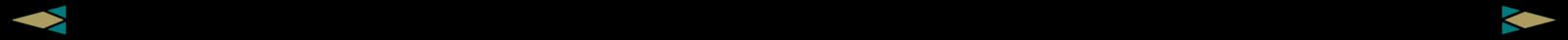 DIVIDER-2