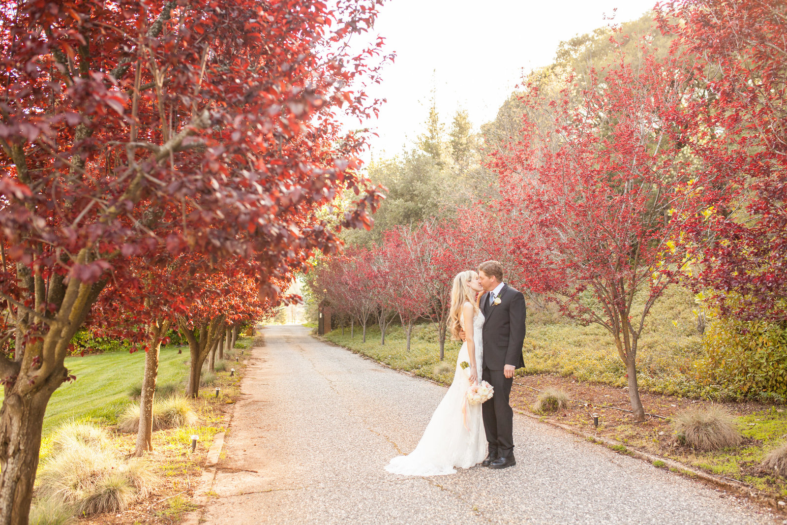 Foresthill Monte Verde Inn Bride and Groom Portrait