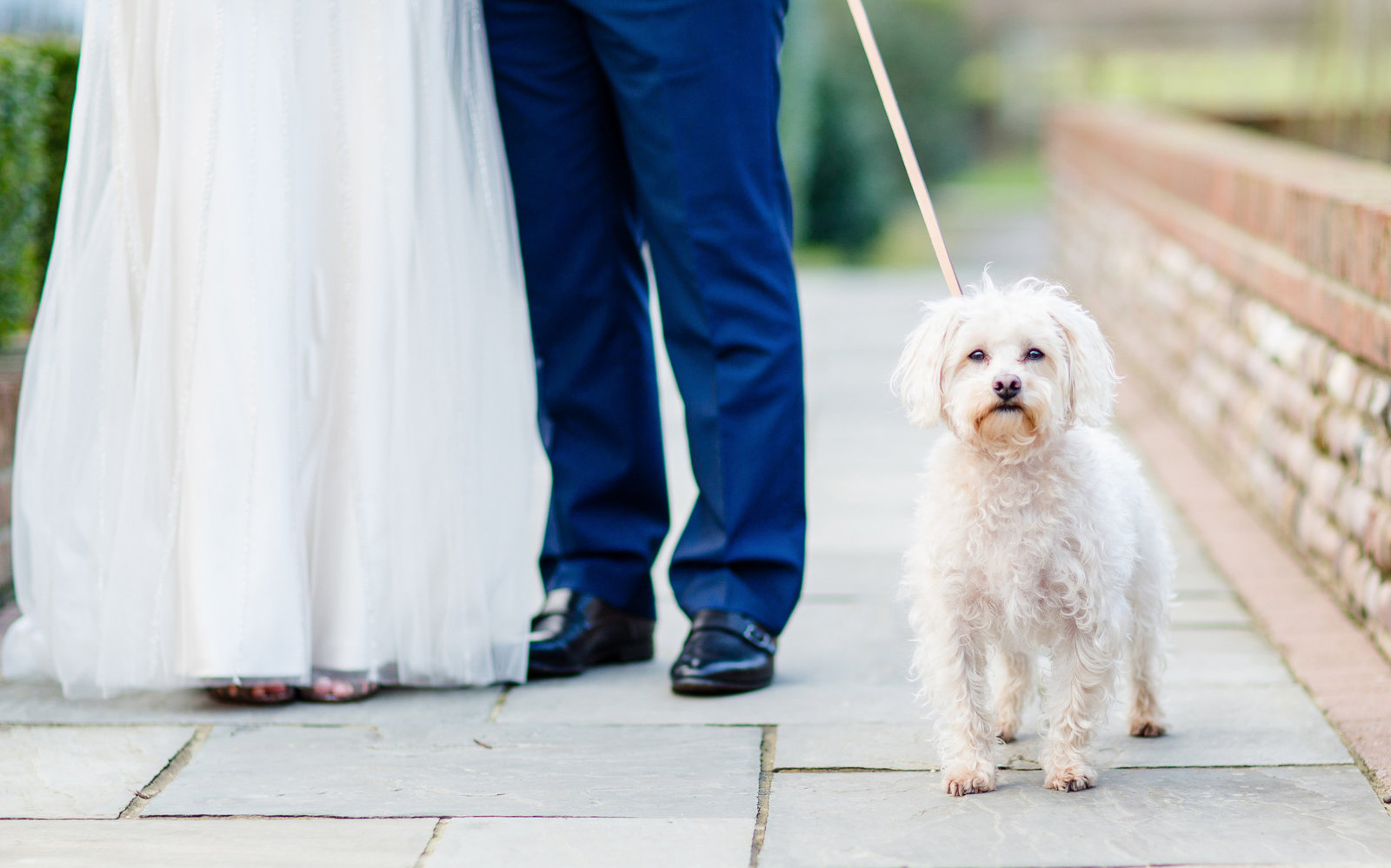 adorlee-086-wedding-photographer-chichester-west-sussex