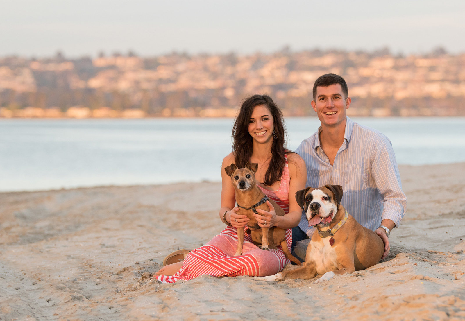 san_diego_dog_photographer_12