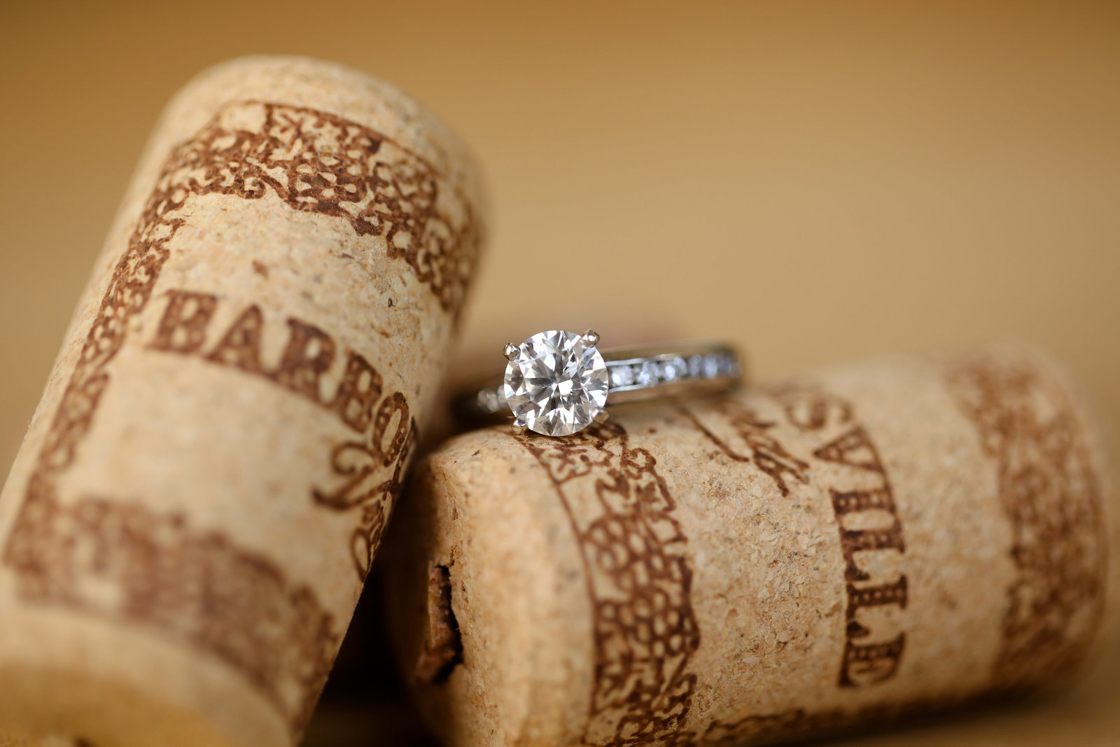 Carley Rehberg Photography - Engagement Photographer - Photo - 11
