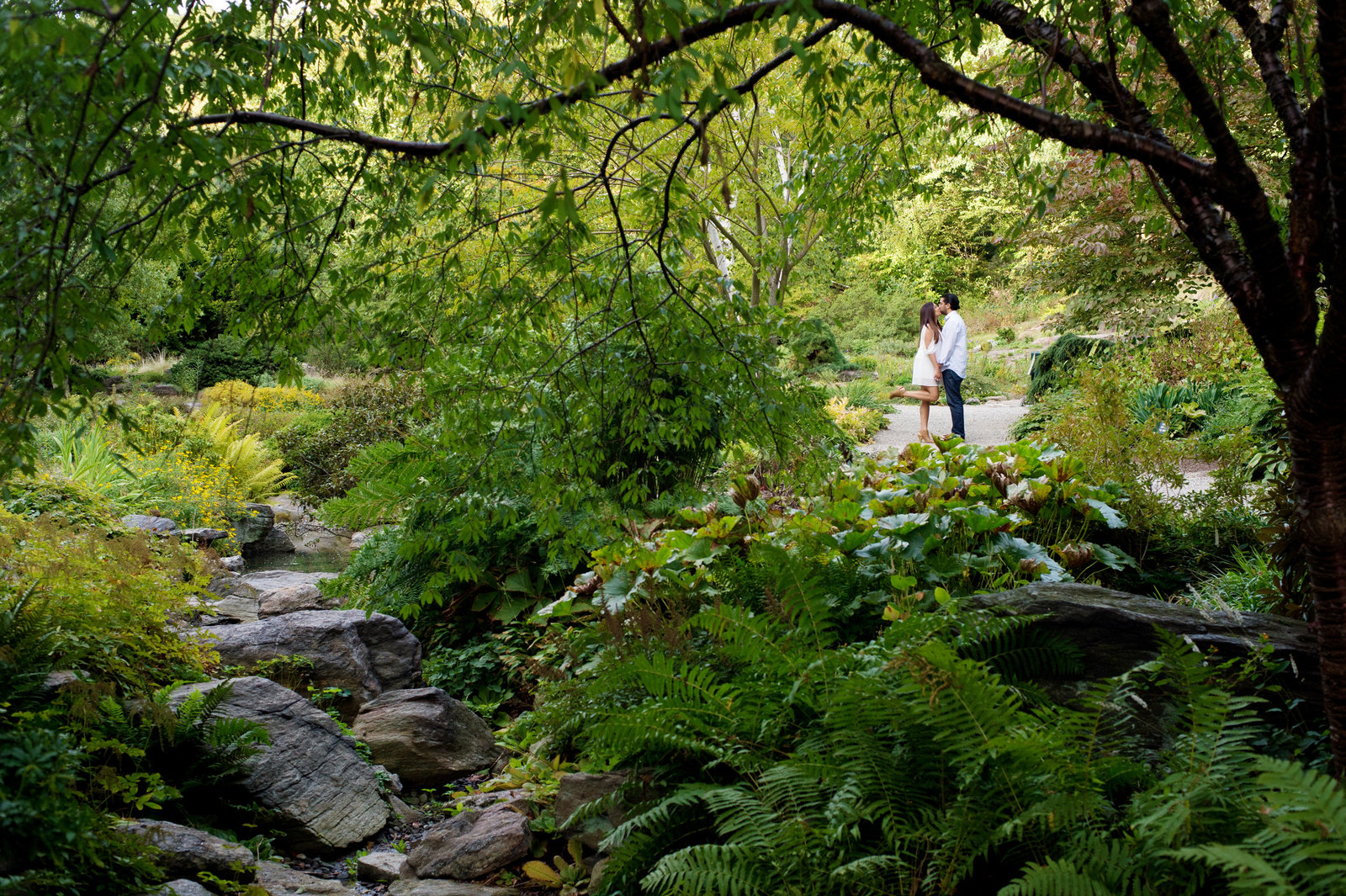 an engaged couple kiss next to a stream in a lush park