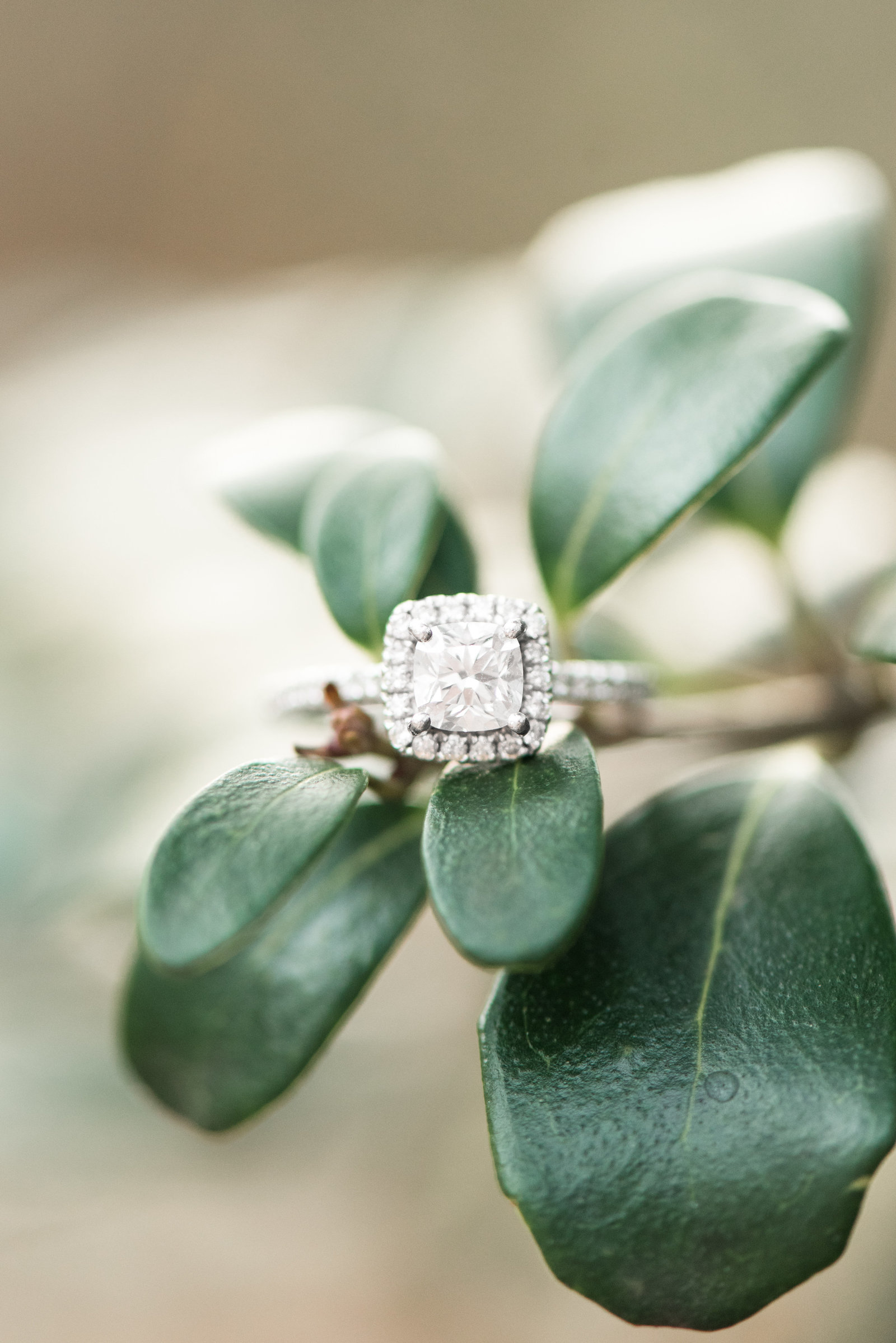 square-cushion-engagement-ring-va-beach865
