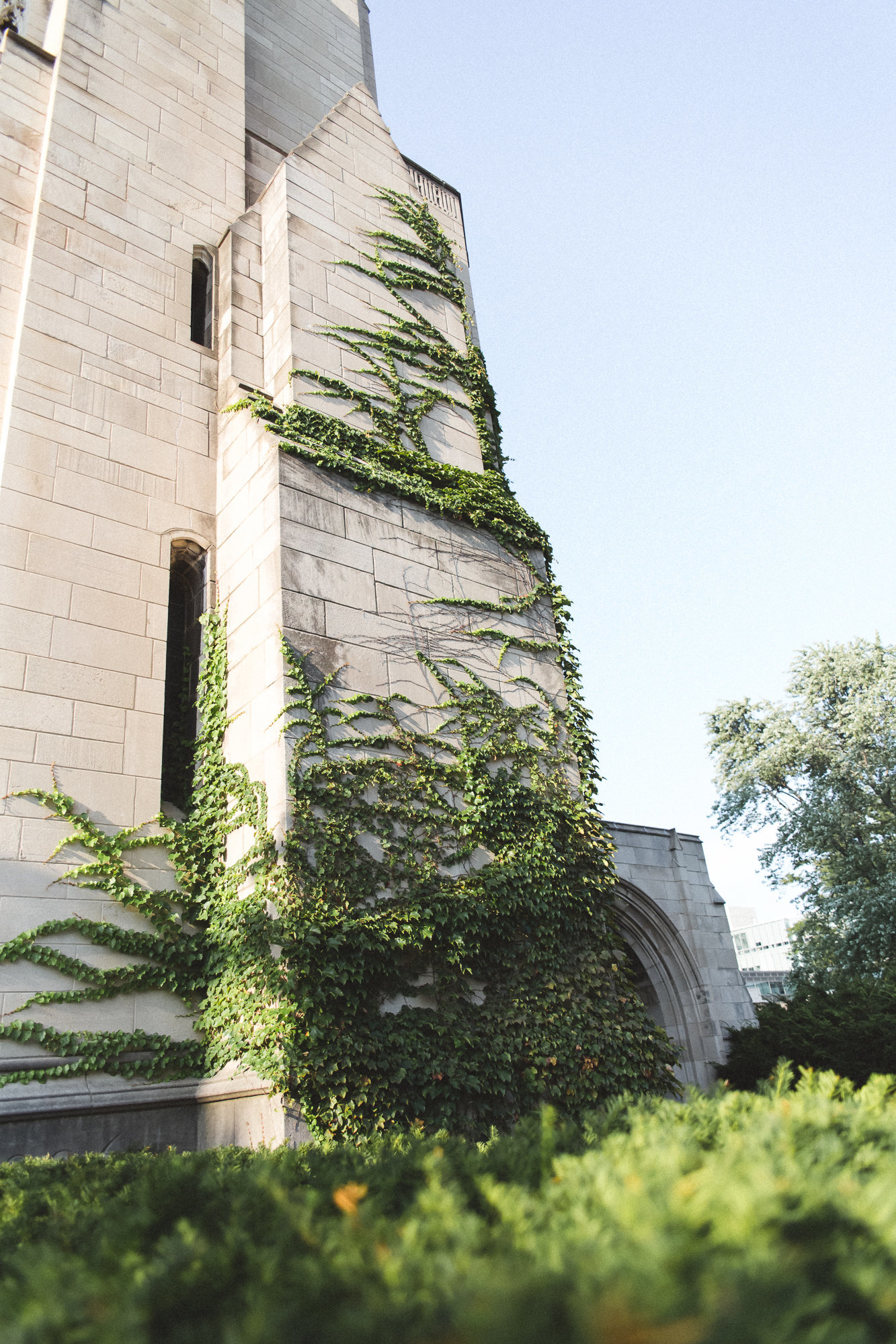 Chicago Illinois - DiBlasio Photography-14