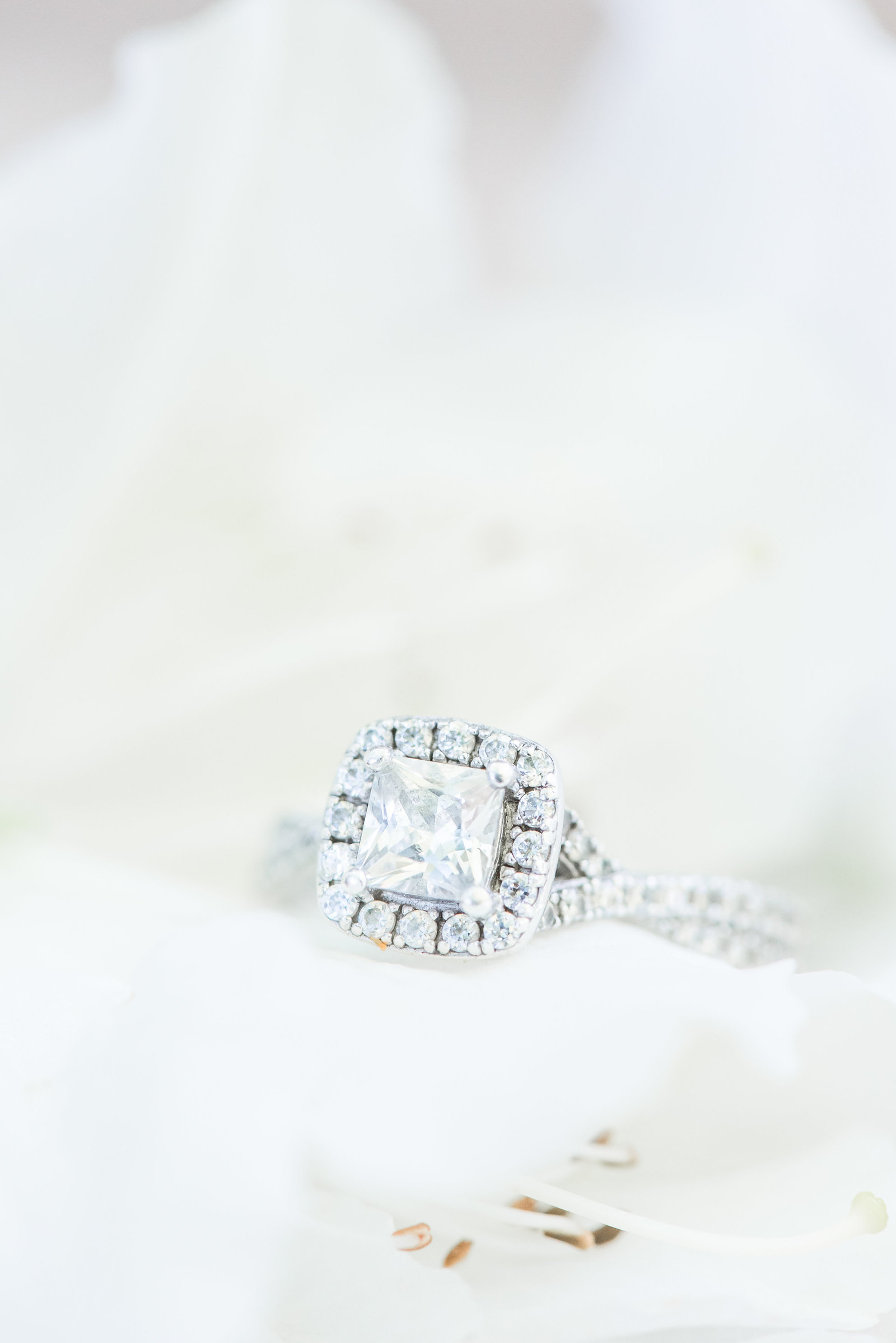a close up shot of an engagement ring at Elon College