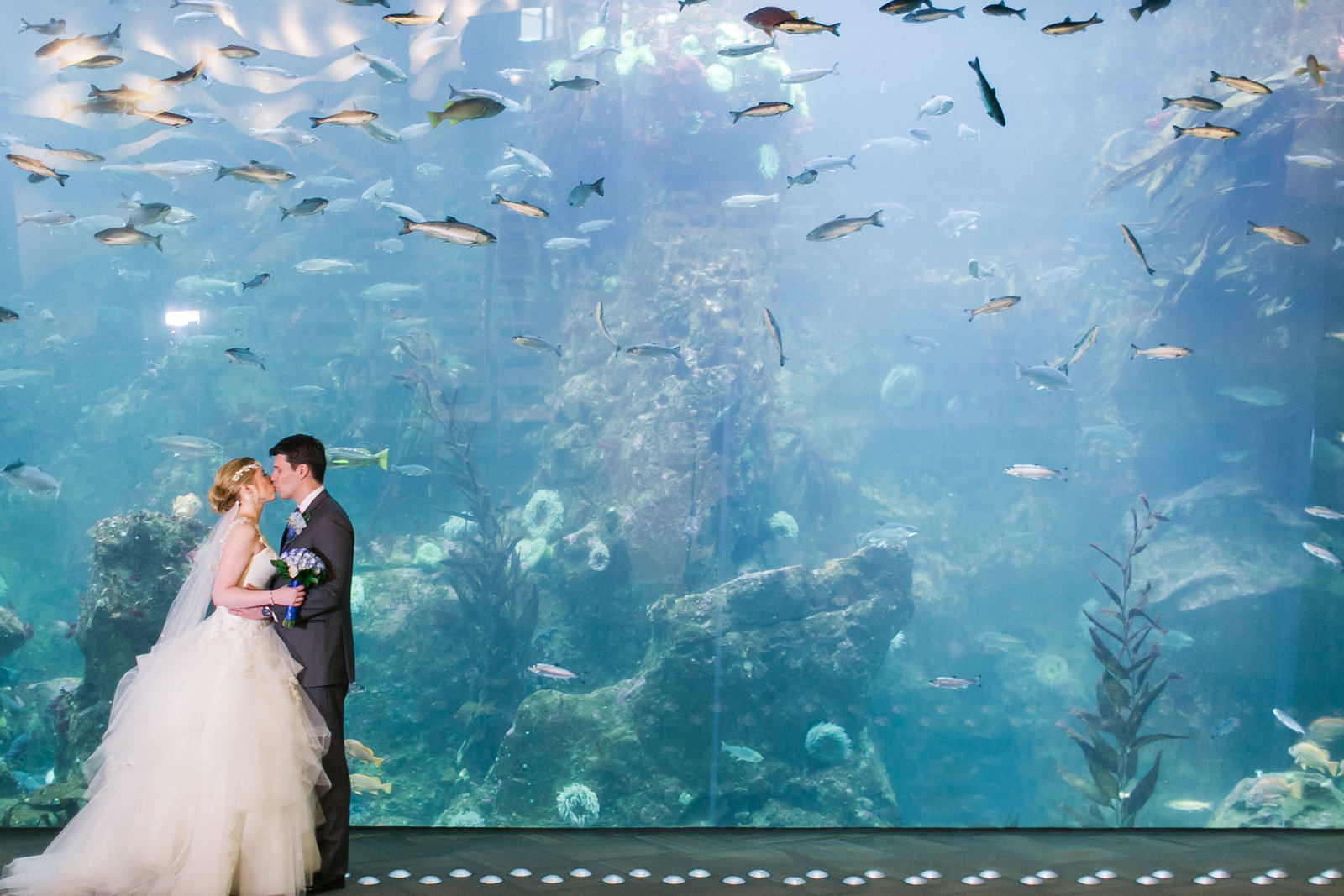 michael-jody-seattle-aquarium-wedding451426