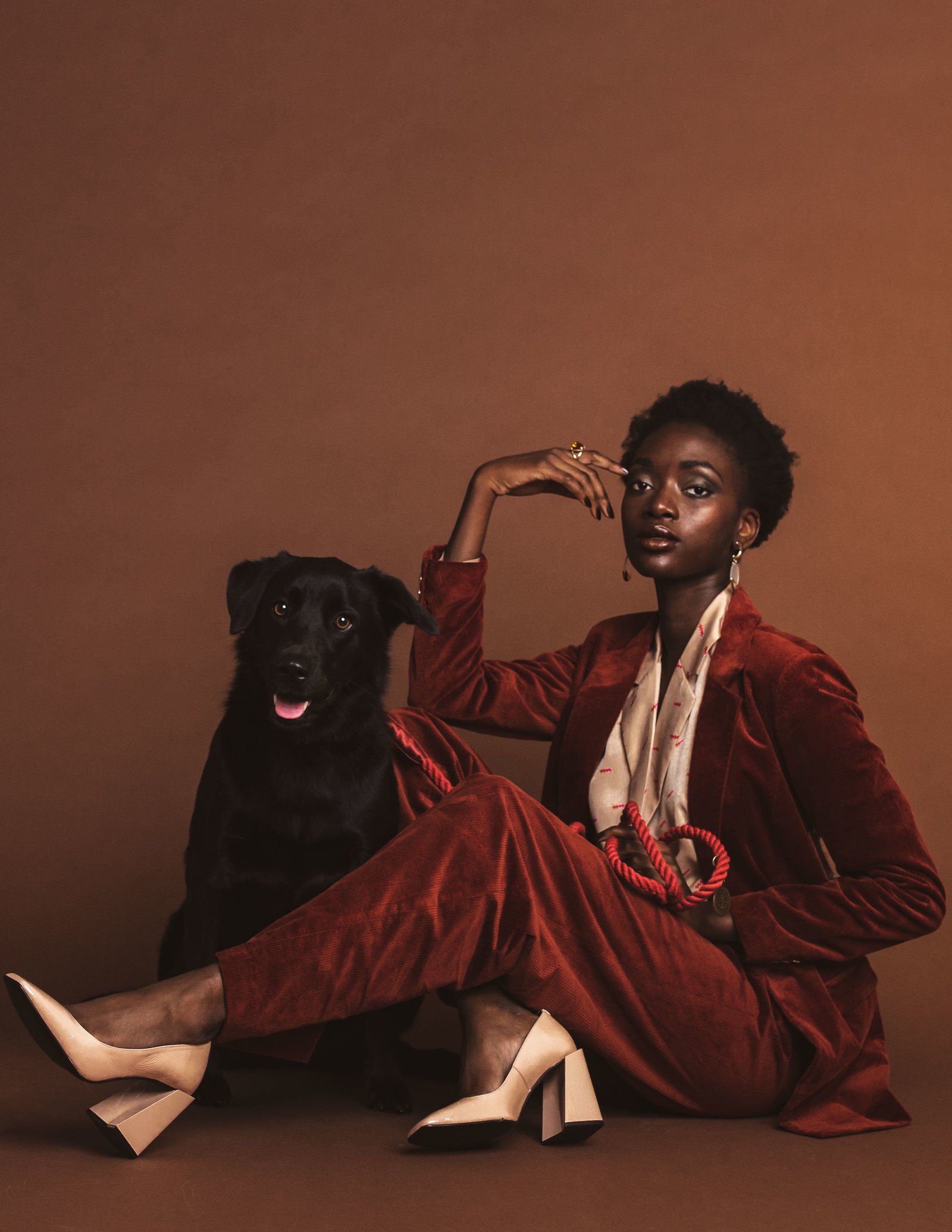 Dog-Fashion-Editorial-by-Brittany-Gawley-Photography-Westboro-Studio-1