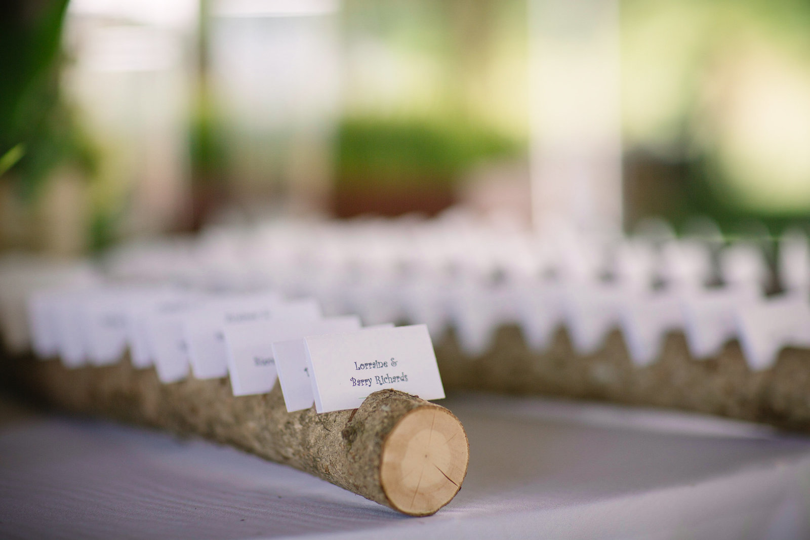 Detail Name Cards for Wedding on log