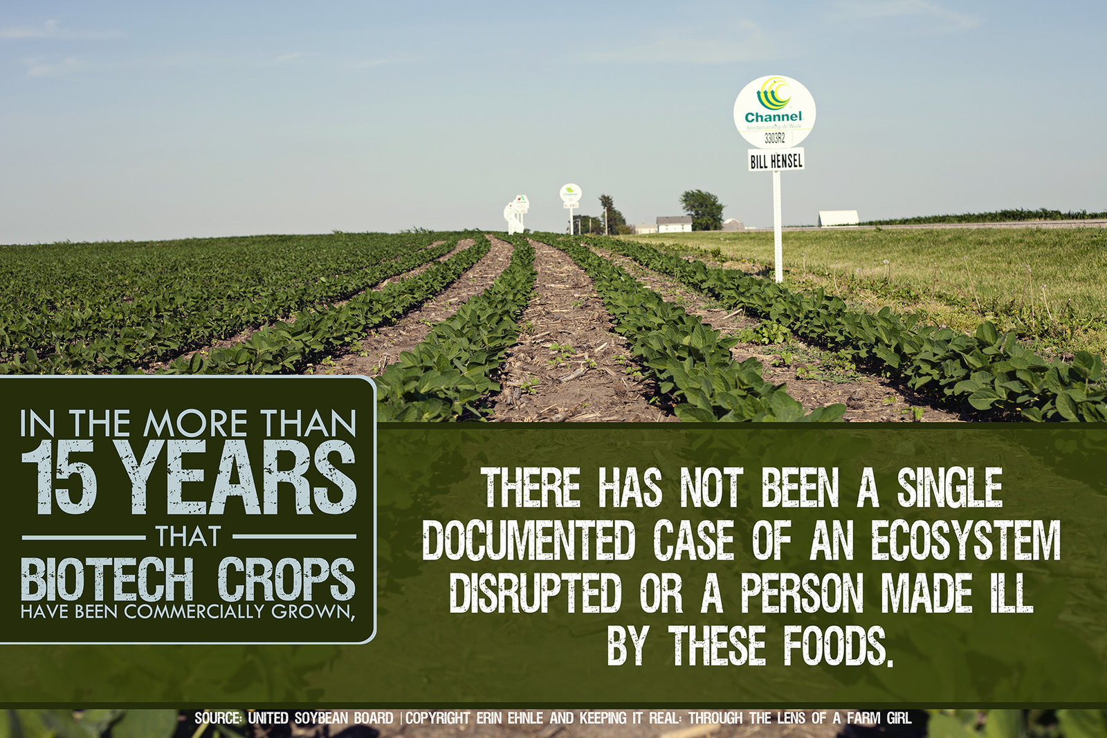 Biotech Crop Safety