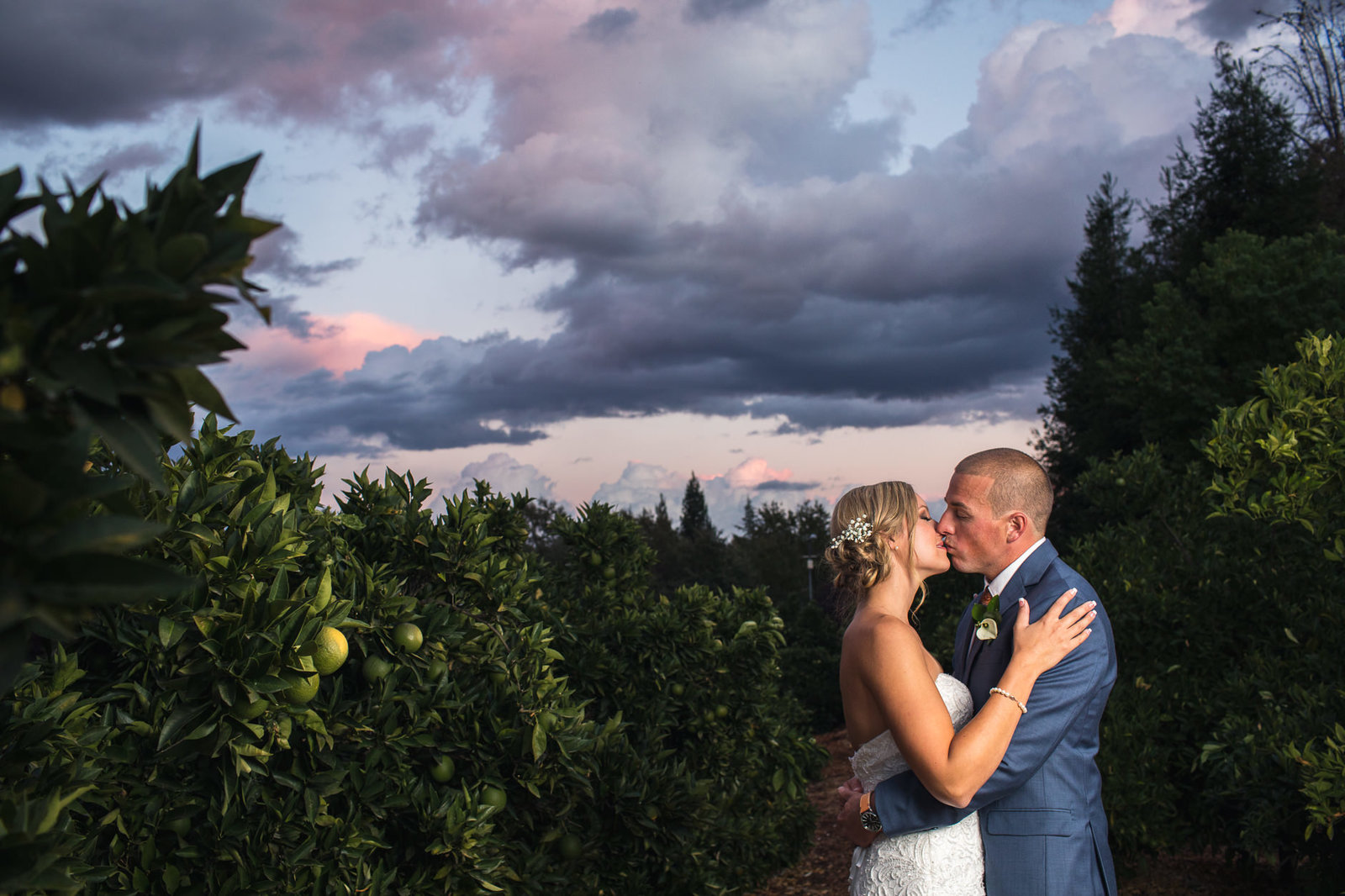 alice-che-photography-loomis-flower-farm-wedding-kissing-at-sunset