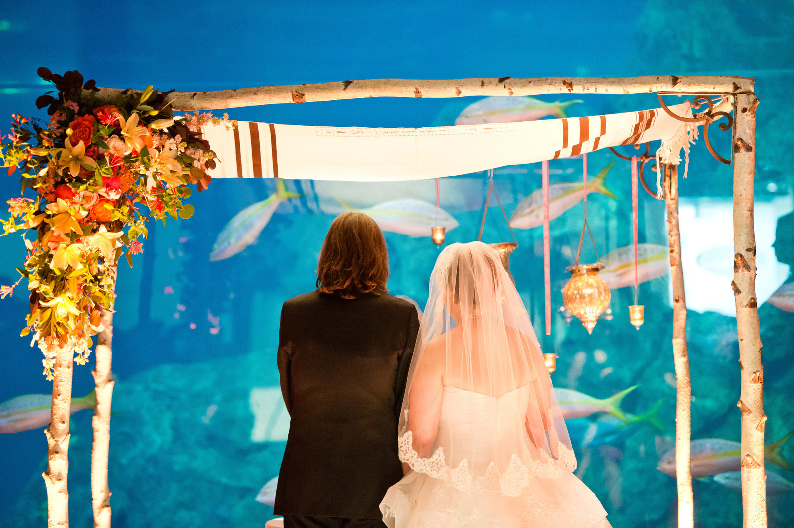Jewish Wedding ceremony at Adventure Aquarium in Camden New Jersey. Wedding in Currents Ballroom. Chuppah design by A Garden Party in Elmer, NJ photo by Amanda Young Photography