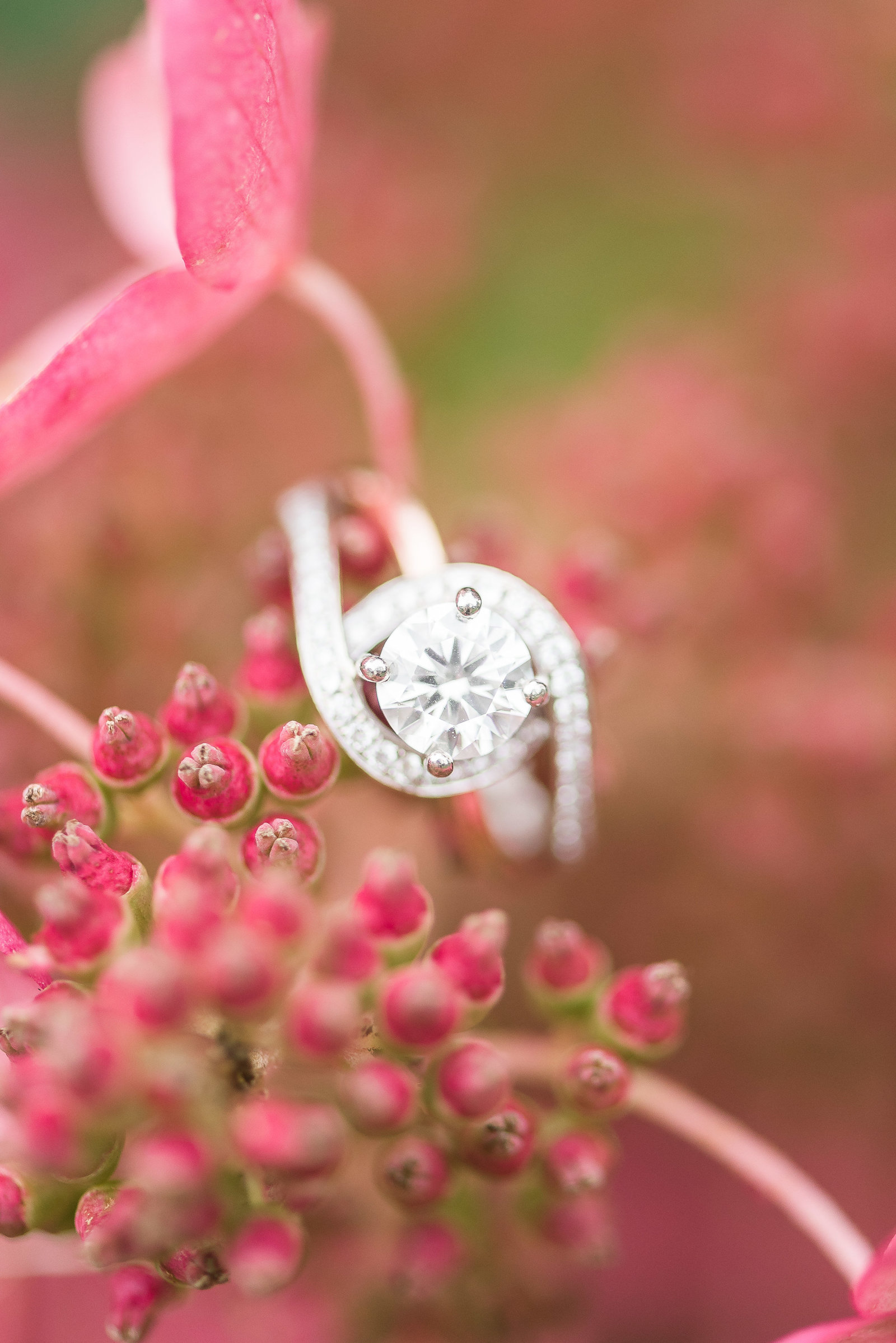 Stunning-Engagement-Ring-Photos-Ottawa-172645