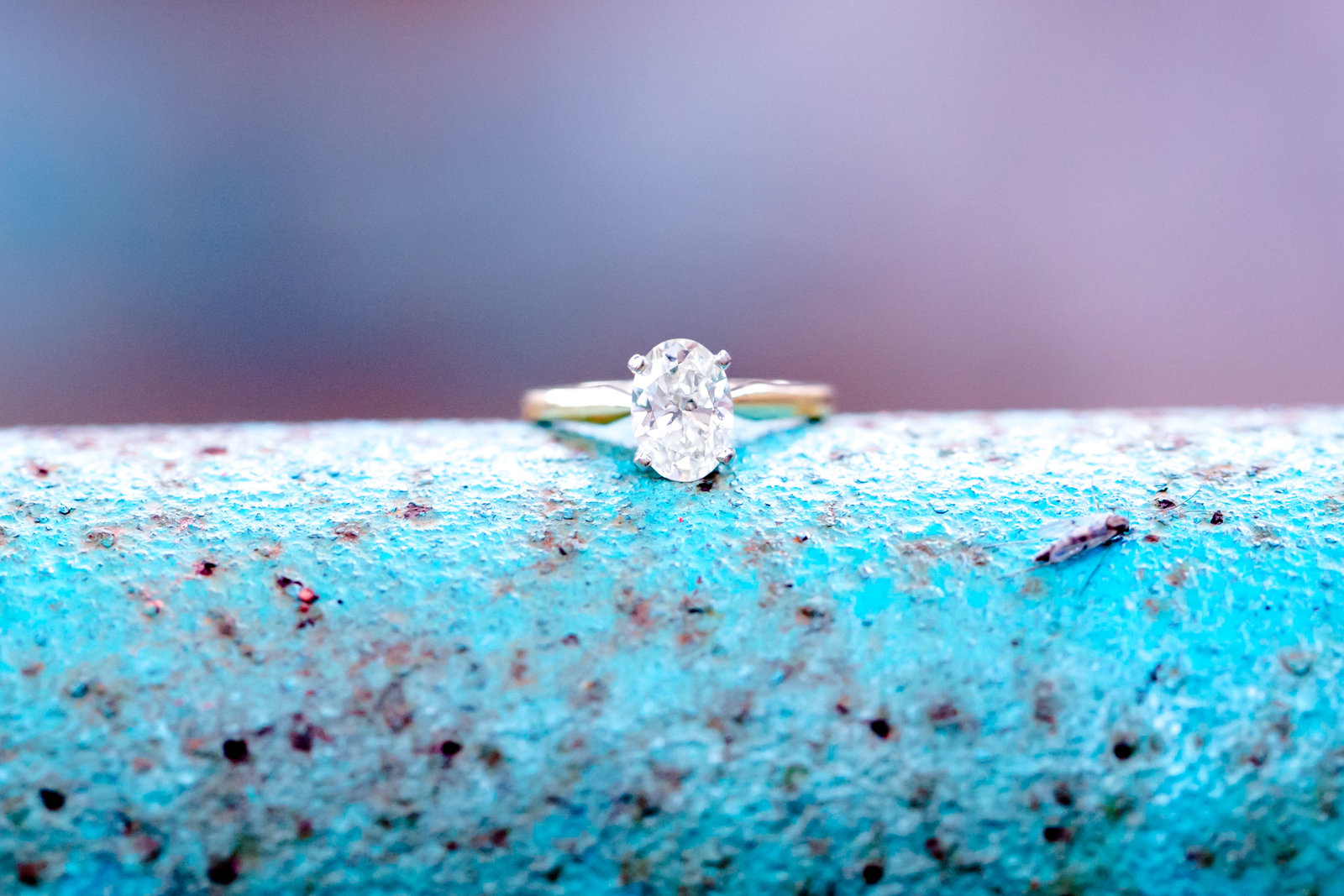 Carley Rehberg Photography - Engagement Photographer - Photo - 17