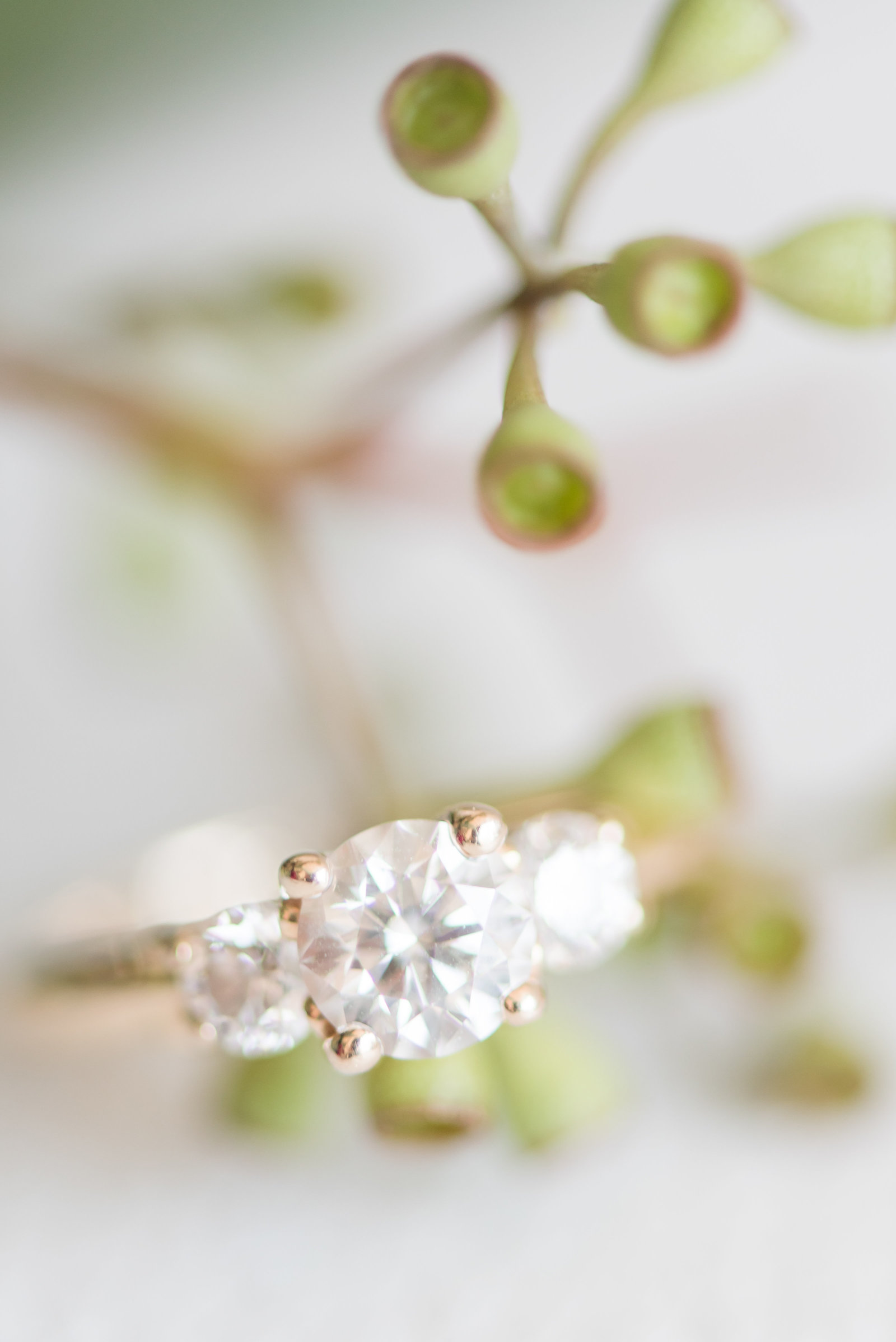 a close up engagement ring shot
