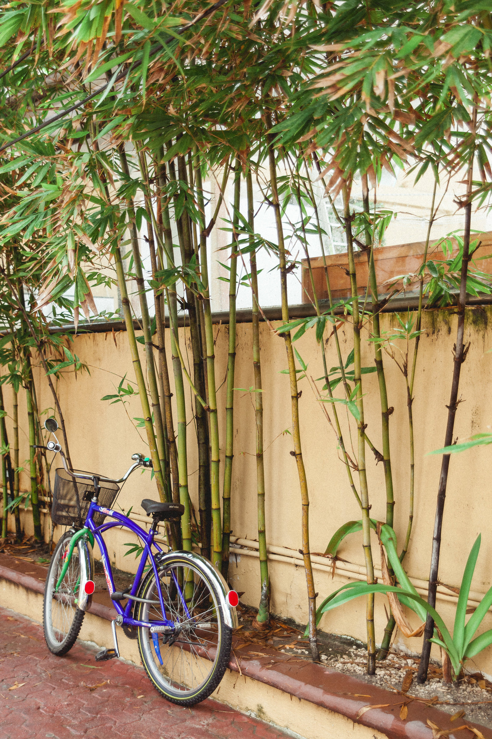 DiBlasio Photo-Mexico-9882