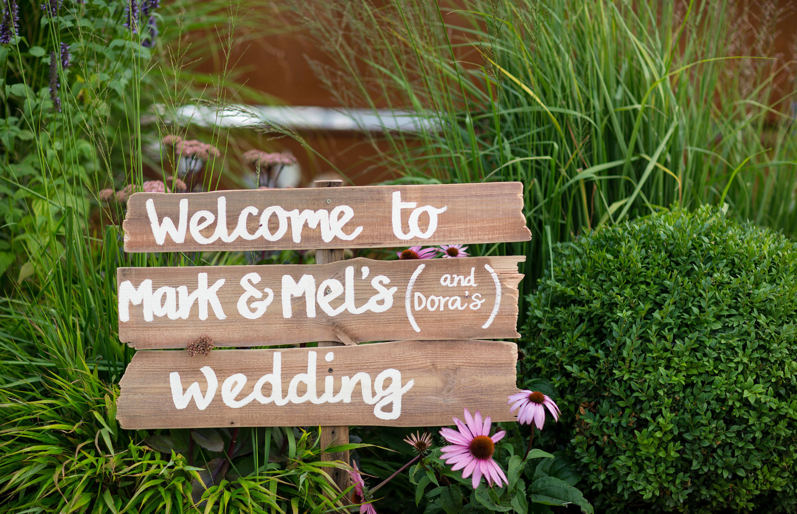 adorlee-0597-southend-barns-wedding-photographer-chichester-west-sussex