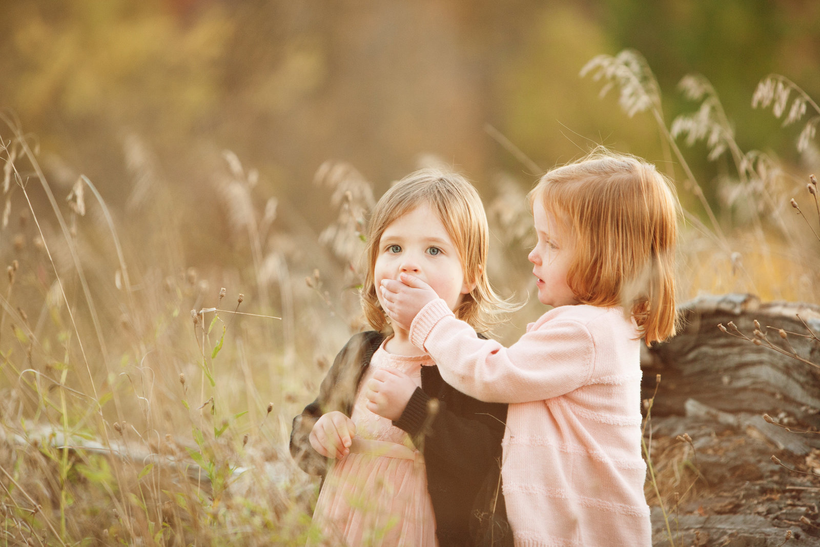 Funny photo of twin toddlers Hudson Valley child photographer Cornwall NY