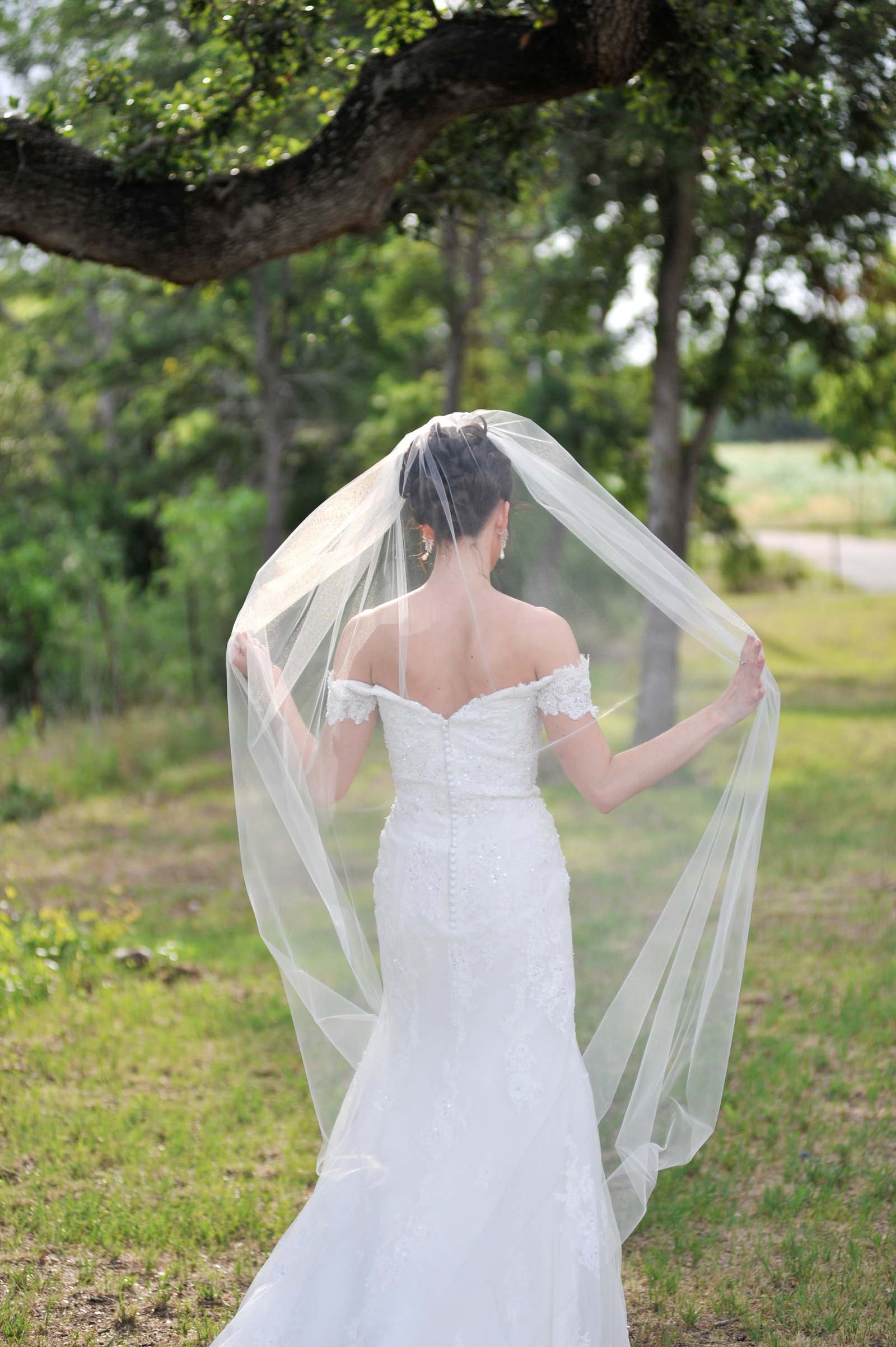 Bride runs her hands along her veil, showing off back of dress at Lone Oak Barn in Round Rock, Texas