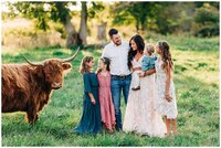 Dreamy sunset family photo on central ohio highland cattle farm.