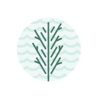 Salty.Spruce.Secondary.Logo.Artwork.White.Text
