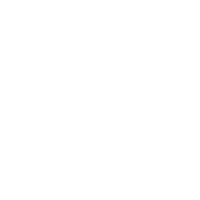 Word Press Icon Standard WHITE