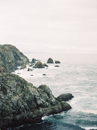 bodega bay elopement with brushfire photography