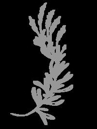 gray floral element-04