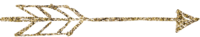 glitter ARROW3