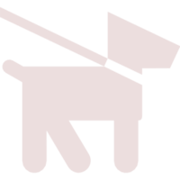 been-holding-dog-icon-45957 copy