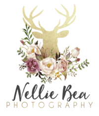Nellie Bea Photography, Grand Rapids, MN Photographer