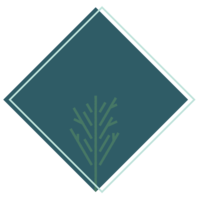 Salty.Spruce.Icon2