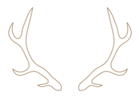 CNP_antlers