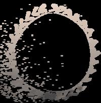 CircleDashsCROP