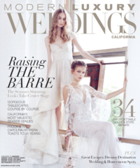 Modern Lux Brides CA Winter 16